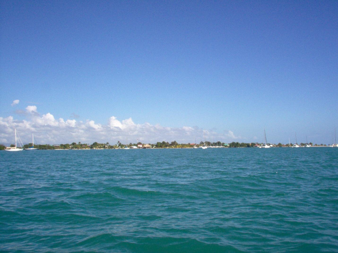 marine ecosystems belize info center
